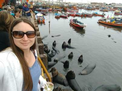 Sea lions and ceviche