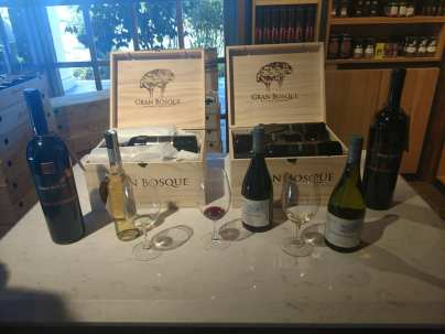 Tasting at Casas del Bosque