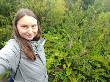Lush forests of Chiloe