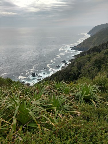 Pacific coastline near Valdivia